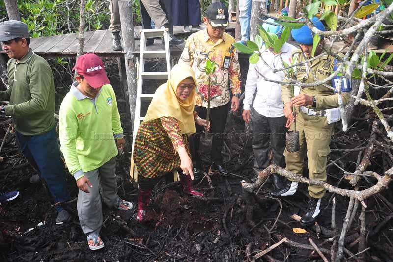 Wabup Natuna Sambangi Mekar Jaya, Penanaman Mangrove Wujud Kepedulian Lingkungan Akan Untungkan Masyarakat Tempatan